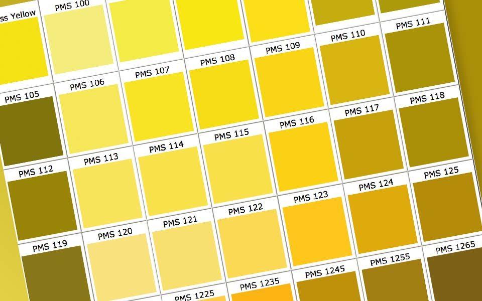 zloty kolor w wizerunku firmy